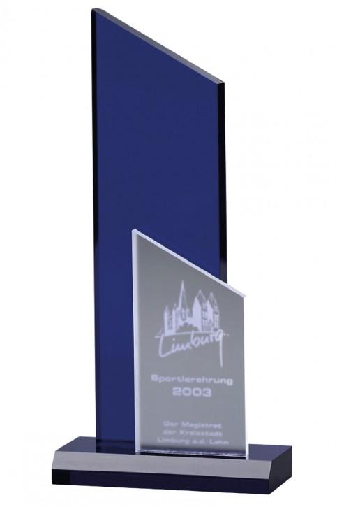BLUE ICE AWARD